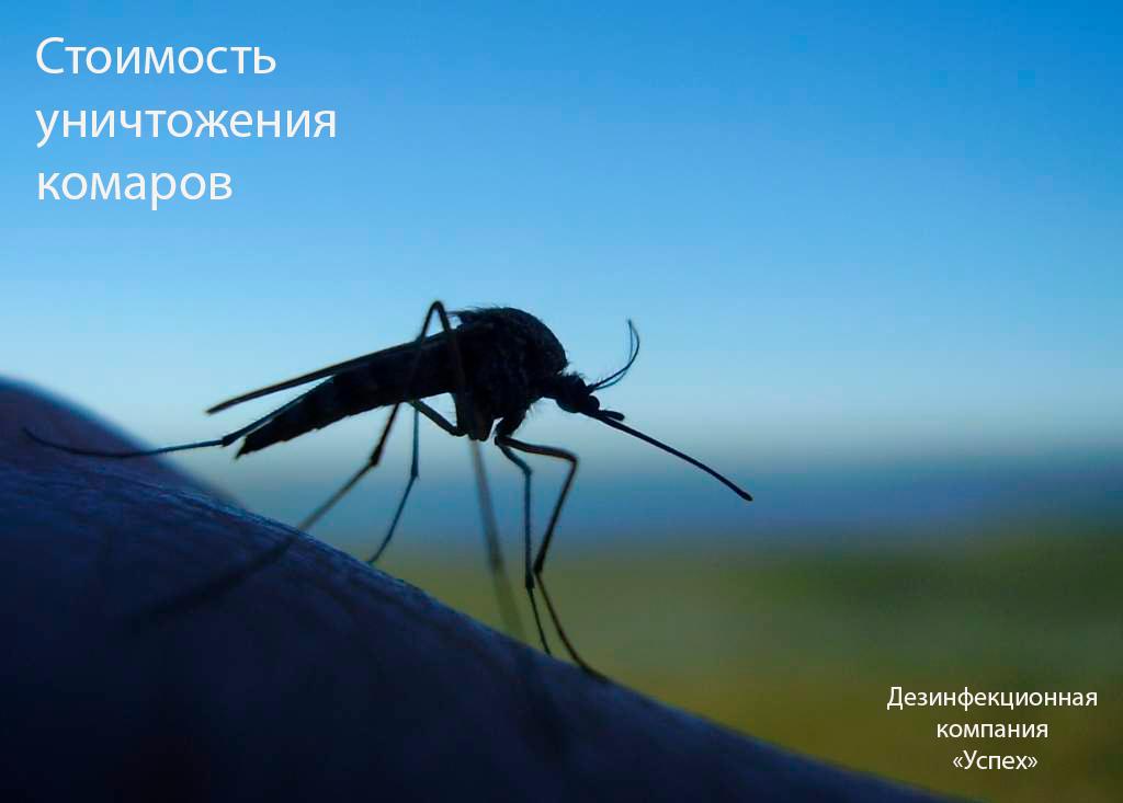 цена обработки от комаров